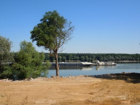 Dunav, 2013.